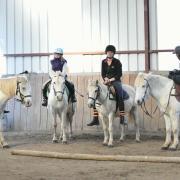 Equipe White Pony