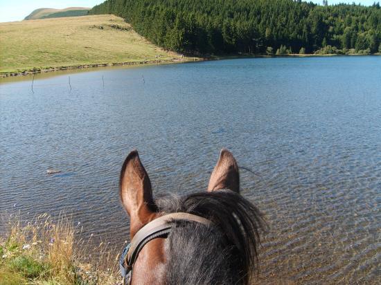 le calme plat au lac Servière