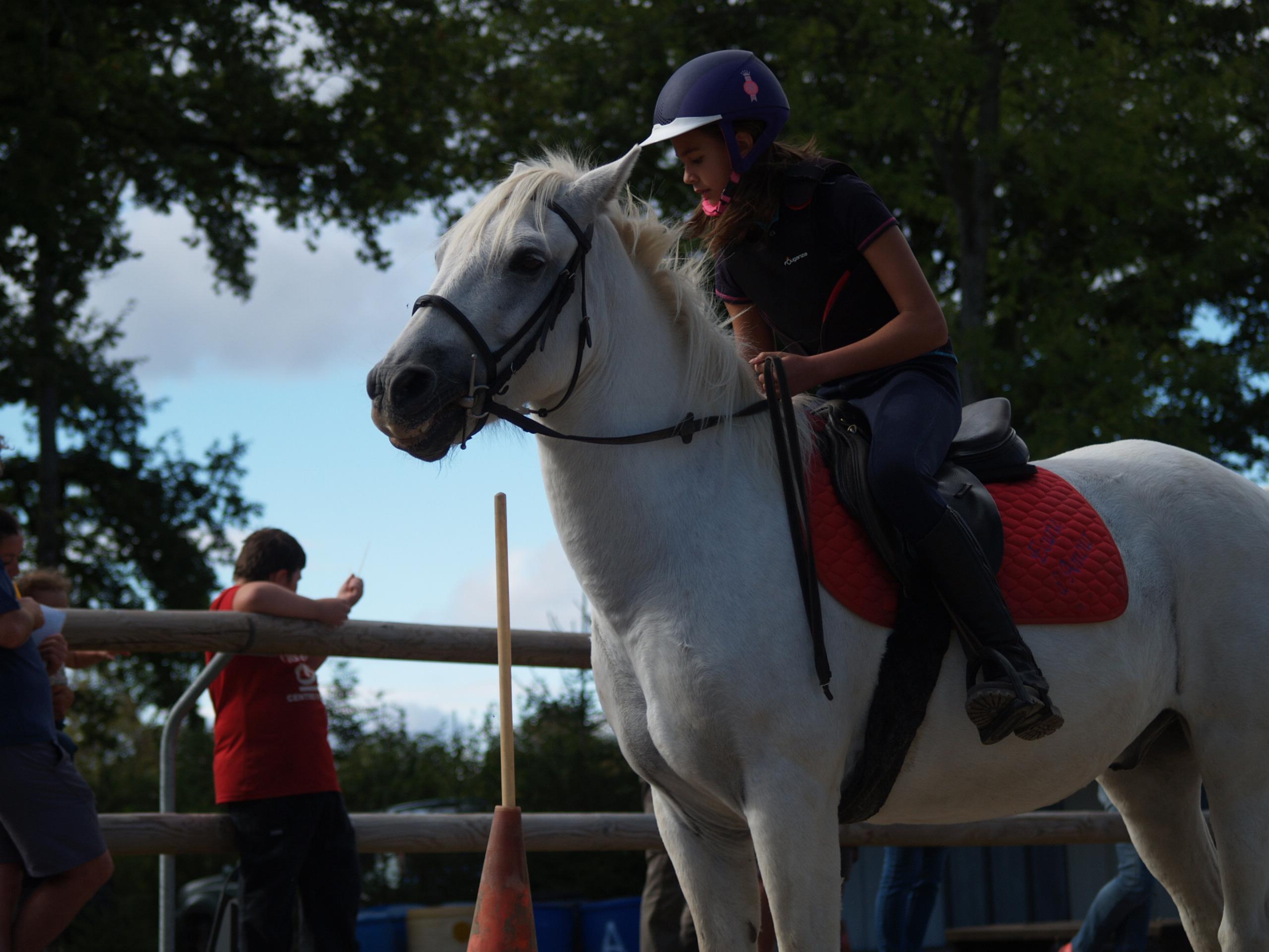 Fête du cheval 2018